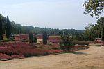 Heidegarten in Schneverdingen