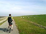 Radtour zum Eidersperrwerk